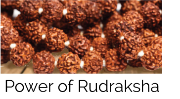 The Healing Power of Rudraksha